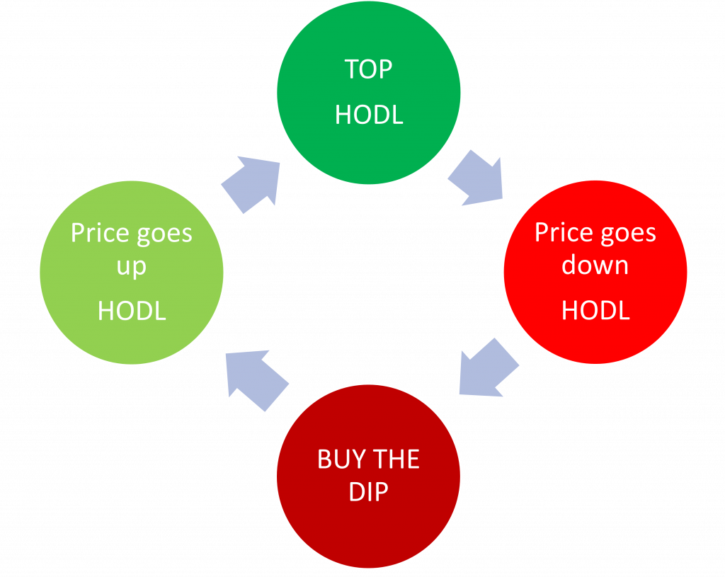 HODL strategy infographic